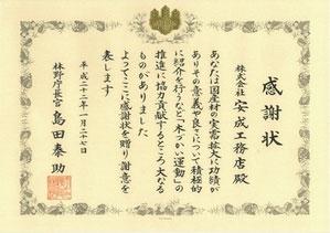 20100310174921a